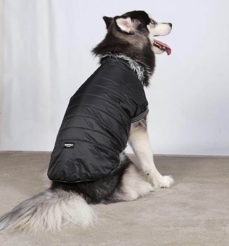 doggydolly big dog bd075 winterparka f r gro e hunde. Black Bedroom Furniture Sets. Home Design Ideas