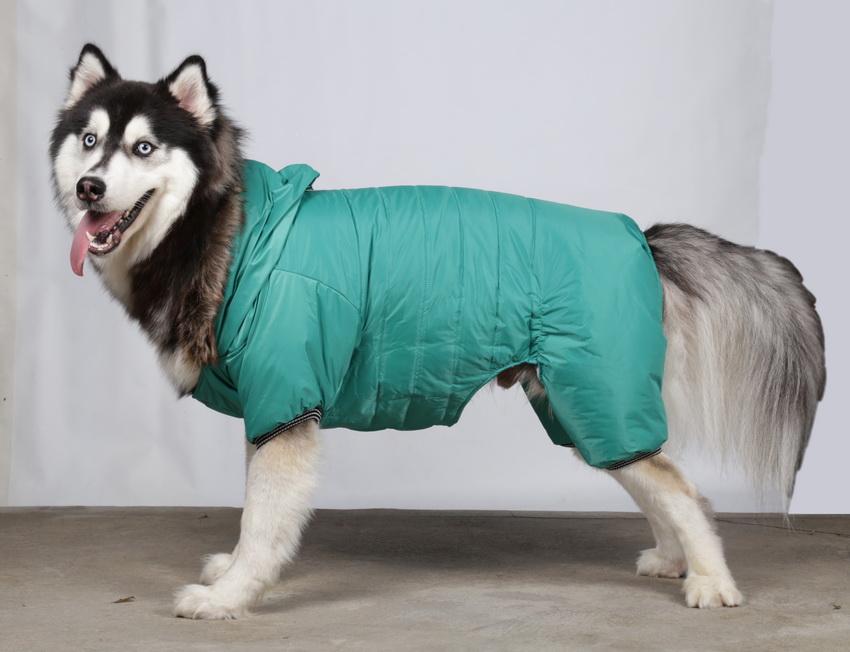 doggydolly big dog bd209 skianzug f r gro e hunde gr n bd209. Black Bedroom Furniture Sets. Home Design Ideas