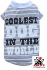 Vorführmodell - DoggyDolly BIGDOG Hundeshirt gestreift BD215