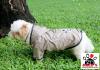 Vorführmodell - DoggyDolly Hunderegenmantel bronze DR052
