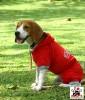 Vorführmodell - DoggyDolly Hundejogging rot DRF024 - S