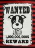 DoggyDolly T518 Hundeshirt rot-schwarz - XXS
