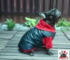 Vorführmodell - DoggyDolly MOPS&CO Hundeparka schwarz-rot FP-W110