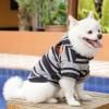 DoggyDolly W416 Kapuzen Pullover für Hunde grau-schwarz gestreift