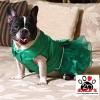 Vorführmodell - DoggyDolly MOPS&CO Hundesfesttagskleid grün FP-F022-M